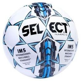 Select Numero 10 IMS